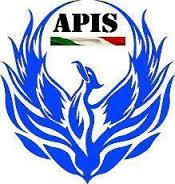logo APIS